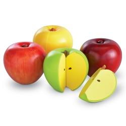 Magnetyczne jabłka-ułamki,...
