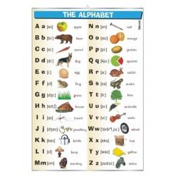 Plansza ścienna: The Alphabet (j.angielski)