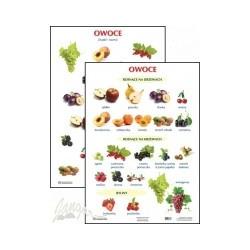Plansza ścienna: Owoce, 2-stronna