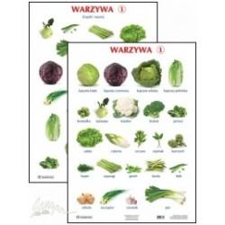 Plansza ścienna: Warzywa 1, 2-stronna