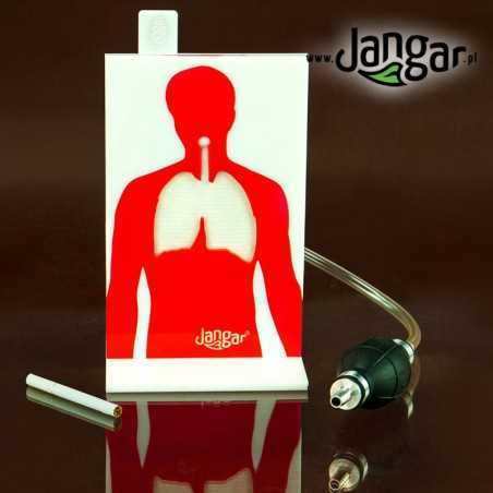 Negatywne skutki palenia papierosów zestaw demonstracyjny