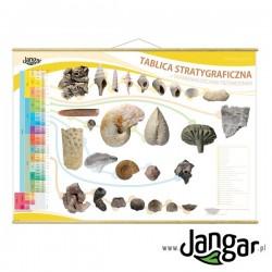 Plansza ścienna: Tablica stratygraficzna ze skamieniałościami przewodnimi z drążkami