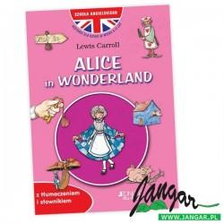 Alice in Wonderland – książka