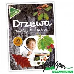 Drzewa naszych lasów cz. II – książka