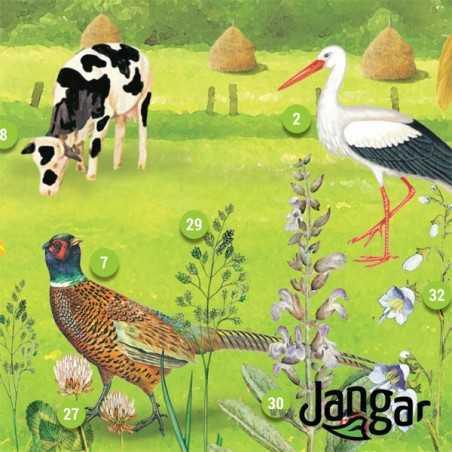 Plansza ścienna: Ekosystem łąki i pola, 91 x 130 cm