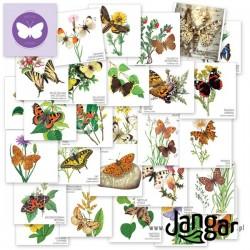 Gra Memory-54: Motyle Polski – 54 elementy w pudełku