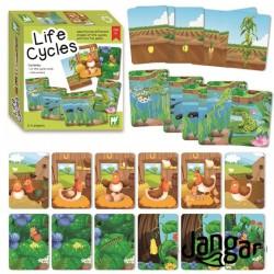 Cykle życiowe – 24 karty sekwencyjne