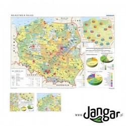 Mapa ścienna: Rolnictwo w Polsce - uprawy i struktura użytkowania ziemi
