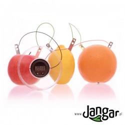 Zegar z baterią owocową – zestaw doświadczalny
