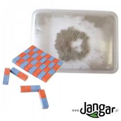 Pudełka z opiłkami + magnesy – zestaw klasowy (10 kpl.)