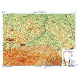Mapa ścienna regionalna, 160x120 cm: Małopolska