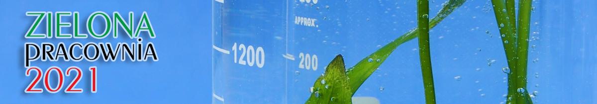 Zielona Pracownia 2021 Wyposażenie